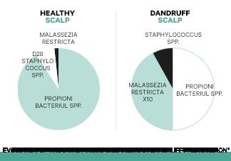 Desequilibrio del microbioma