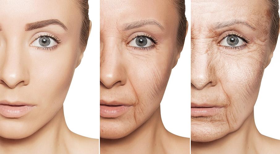Exposoma y envejecimiento push